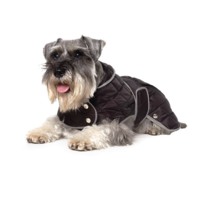 Ancol Black Quilt Dog Coat