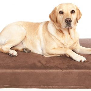 Memory Foam Dog Mattresses
