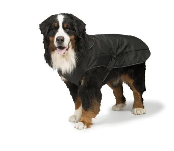 2 in 1 Harness Dog Coat