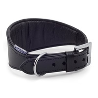 Ancol Whippet & Greyhound Padded Dog Collar