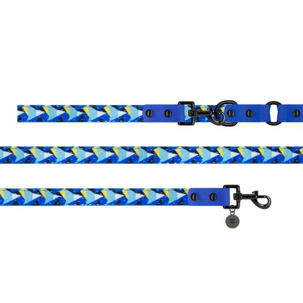 Blue Geometric Smart Lead
