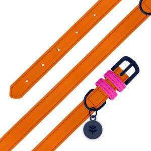 Sotnos Orange Collar