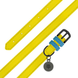 Sotnos Yellow Collar