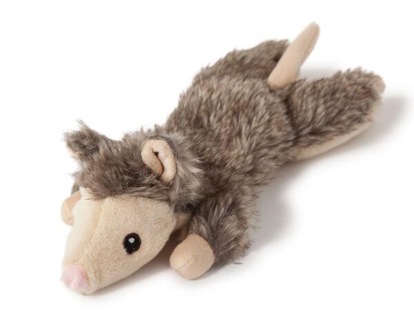 Sybil the Flat Squirrel