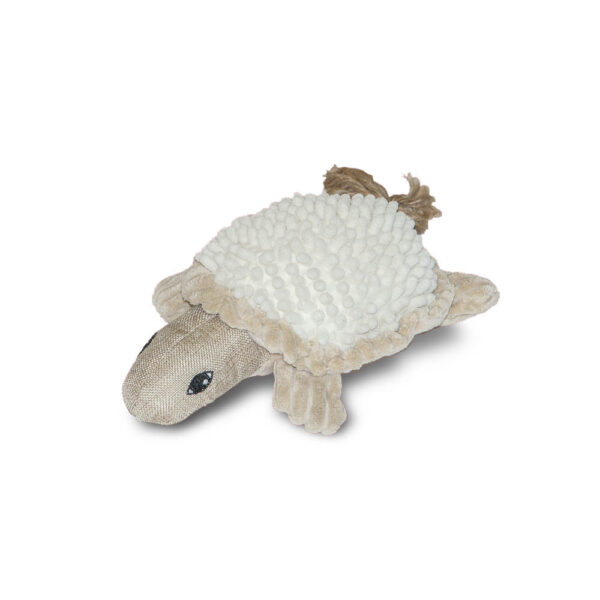 """Timothy the Natural Turtle 10"""""""